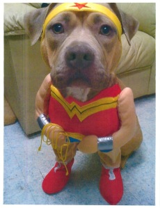 Gracie, a former AACCC resident, shows off her superpower of cuteness