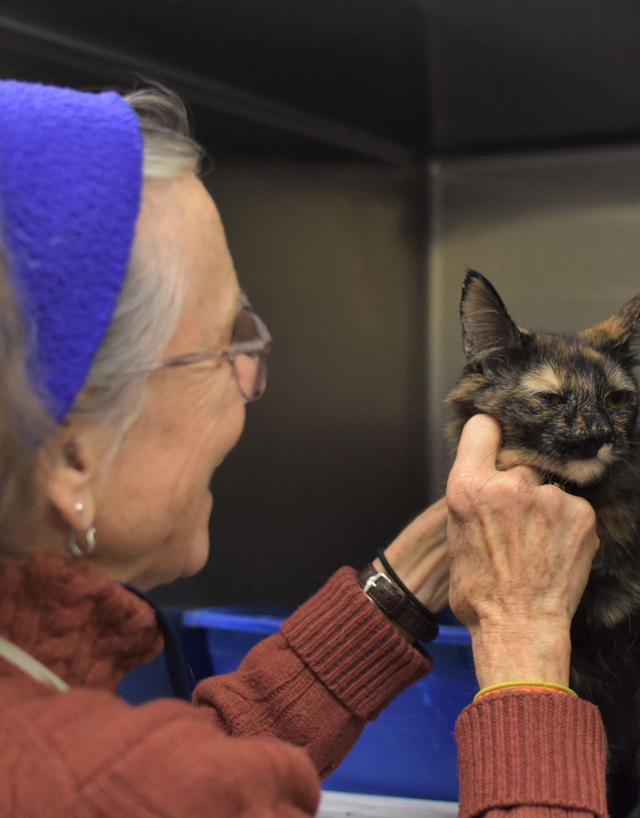 1.29.20_spendthedaywithus_FB and IG_cat volunteer